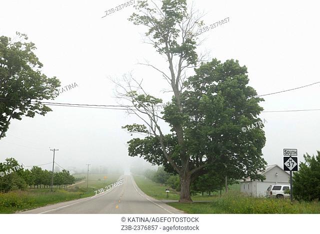 Foggy day on the Old Mission Peninsula, Lake Michigan, Traverse City area, Michigan, USA