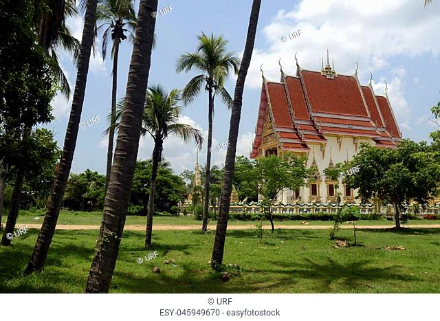 The Tempel Wat Pak Saeng near Lakhon Pheng on the Mekong River in the Provinz Amnat Charoen in the northwest of Ubon Ratchathani in the Region of Isan in...