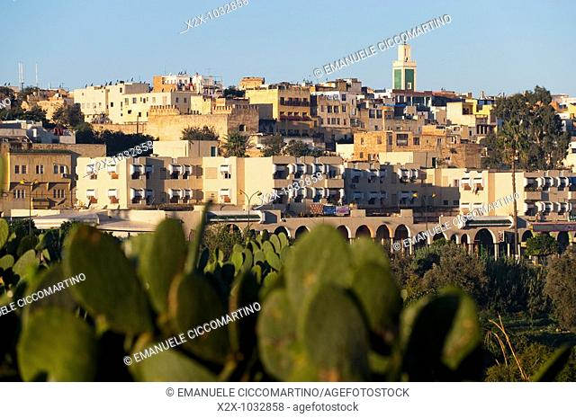 Town of Meknes, Morocco