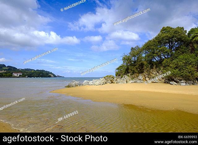 Playa San Antonio, Urdaibai estuary, Mundakako, Urdaibai Biosphere Reserve, near Gernika, Basque Country, Bizkaia Province, Vizcaya Province, Northern Spain