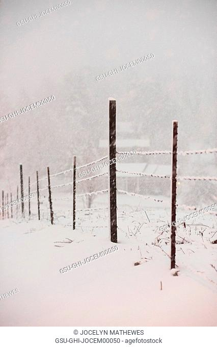 Snowy Barbed Wire Fence in Winter