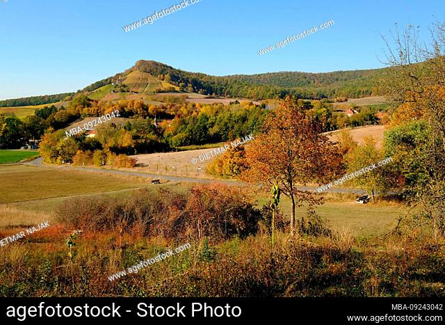 Landscape and vineyards at the winegrower Handthal in the nature park Steigerwald, market town Oberschwarzach, district Schweinfurt, Lower Franconia, Franconia