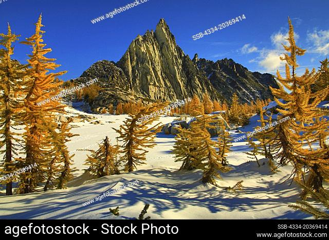 Golden Larch and Prusik Peak in Morning Glow From The Enchantmentments in The Alpine Lake Wildernes In Washington