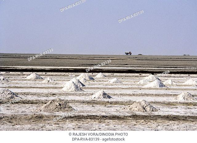 salt plant , salt hips ready for transportation , little rann of kutch , gujarat , india
