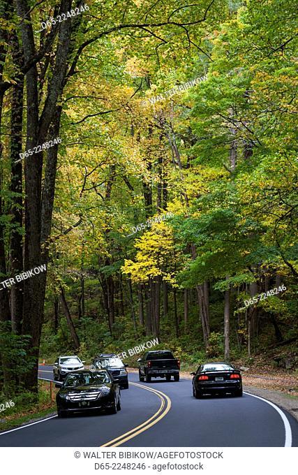 USA, North Carolina, Great Smoky Mountains National Park, Newfound Gap Road, Route 441, autumn