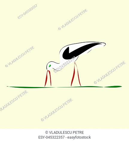 stork with red beak and feet on grass