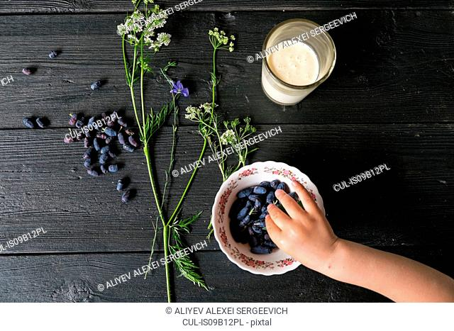 Overhead view of boys hand picking up berries from bowl