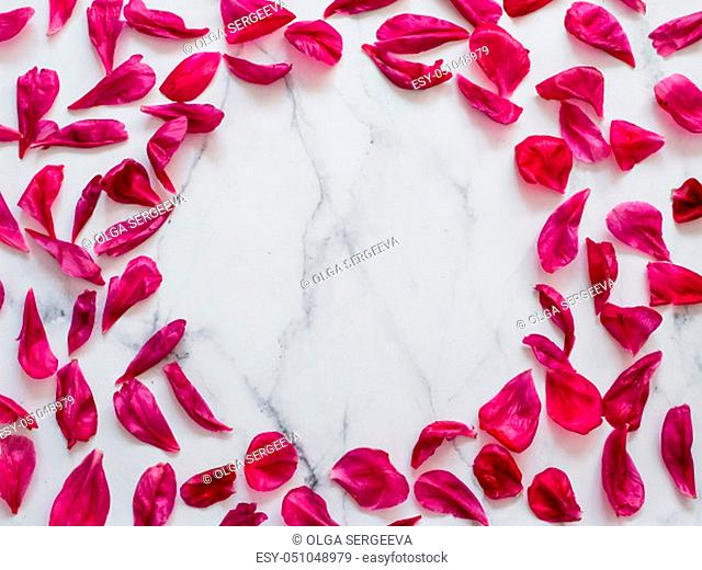 Red burgundy peony petals flat lay in round shape on white marble background. Flower petals with copy space for text or design in center