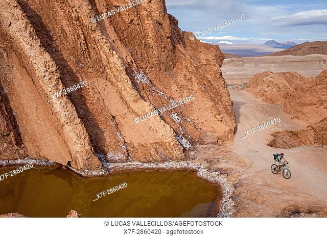 Cyclist, in Valle de la Muerte (Valley of the Death), Atacama desert. Region de Antofagasta. Chile