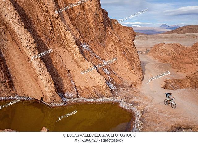 Cyclist, in Valle de la Muerte (Valley of the Death), Atacama desert. Region de Antofagasta. Chile