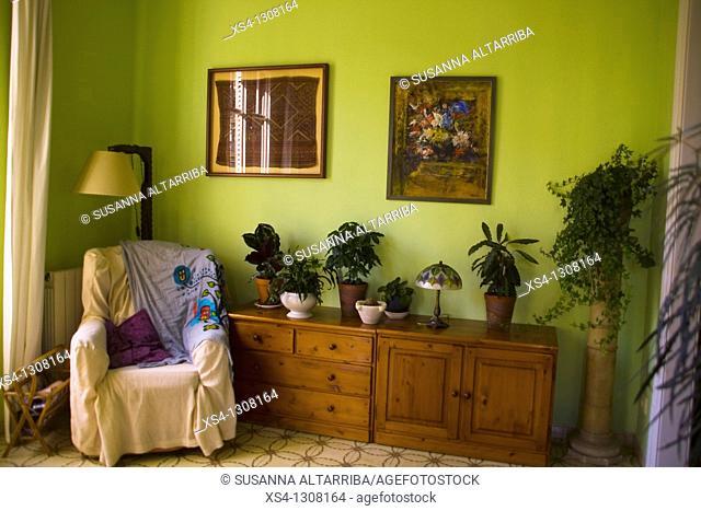 Corner decorated with plants