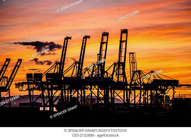 Sunset silhouettes container cargo loading cranes in the Port of Long Beach, CA