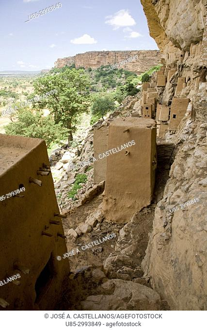 Dogon Country. Mali. Teli Village. In the escarpment's rock face some adobe granaries have been built in an old of Tellem people's settlement