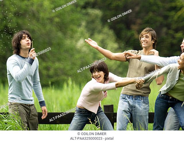 Young man blowing dandelion while friends joke around