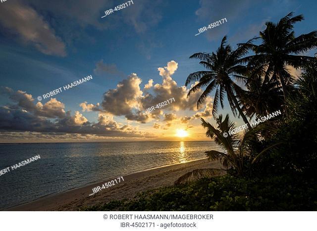 Sandy beach with palm trees at sunset, Rarotonga, Cook Islands