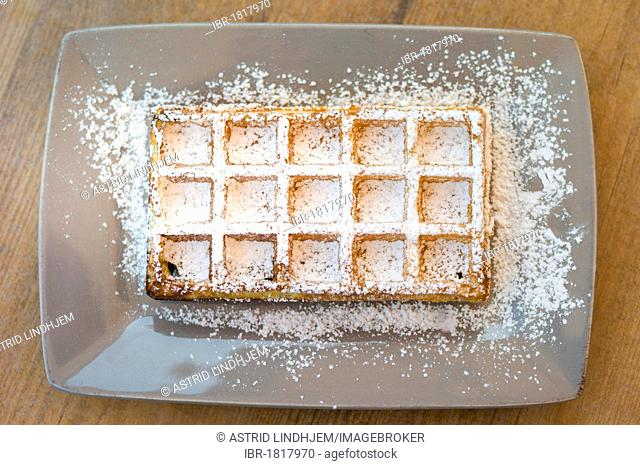 Waffle with icing sugar on a plate