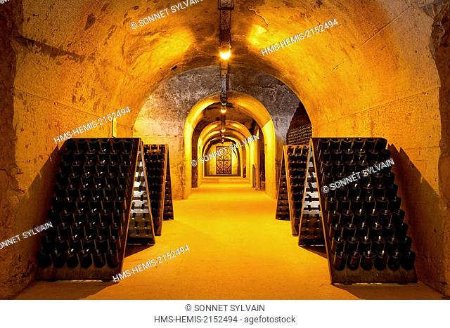 France, Marne, Reims, cellar of Taittinger wine Champagnes
