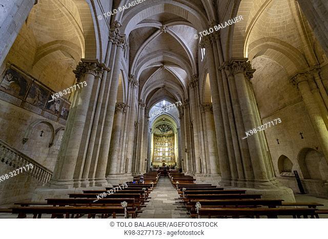 Retablo de la Catedral Vieja, Catedral de la Asunción de la Virgen, catedral vieja, Salamanca, comunidad autónoma de Castilla y León, Spain