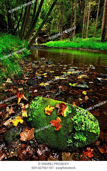 Larch stone with autumn leaves in green landscape with river