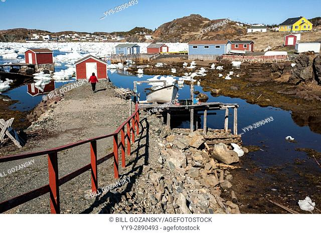 Colorful Fishing Stages and buildings in Durrell, Twillingate, Newfoundland, Canada