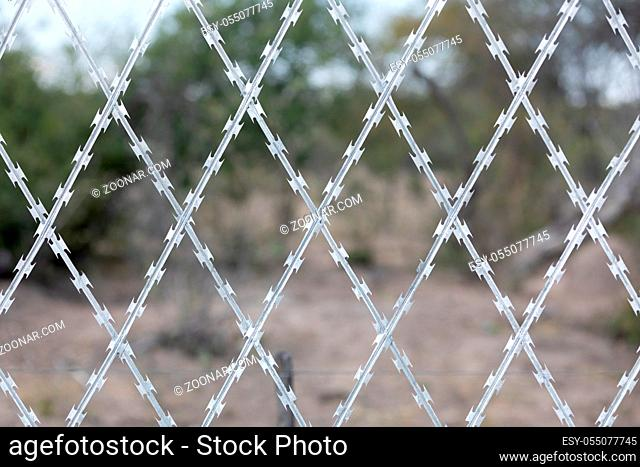 Restricted Area Barbed Fence, security concept, Anti-migrant razor wire on the border.South Africa private security