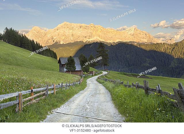 Longiarù, San Martino in Badia, Badia Valley, Dolomites, Bolzano province, South Tyrol, Italy. A footpath with Sasso della Croce in the background
