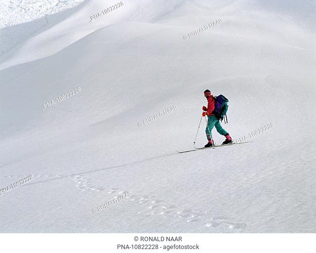 In March 1990, a Dutch team of ski tourist discovered in the Himalayas of Himachal Pradesh a fresh trail of large footstaps