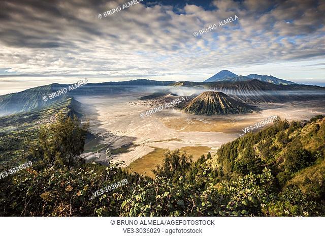 View of Mts. Bromo, Semeru, Batok and Widodaren in Bromo Tengger Semeru National Park (East Java, Indonesia)