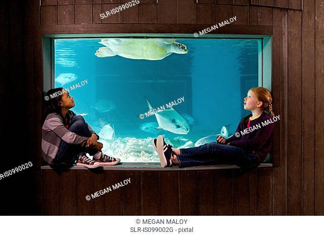 Girls watching sea turtle in aquarium