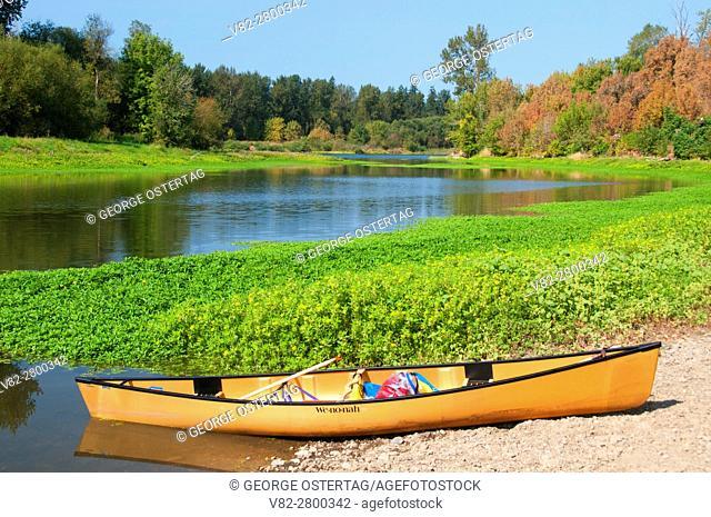 Canoe at Windsor Island Slough near Willamette River, Willamette Mission State Park, Oregon
