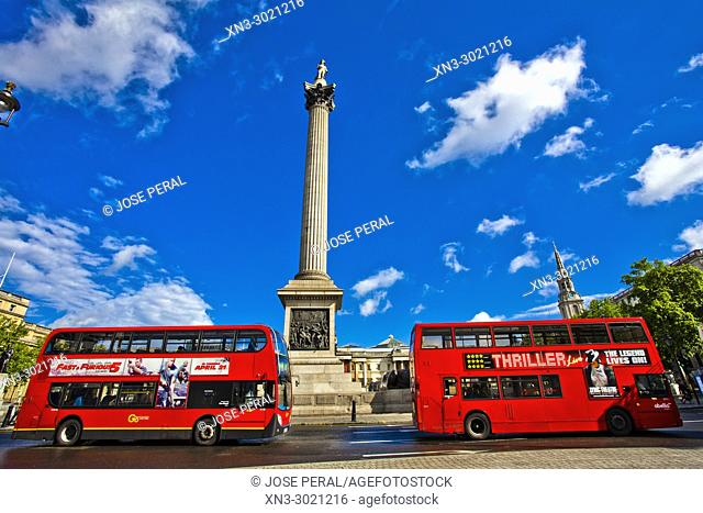 London Bus, two typical red double-decker buses, Nelson's Column, Trafalgar Square, City of Westminster, London, England, UK, United Kingdom, Europe