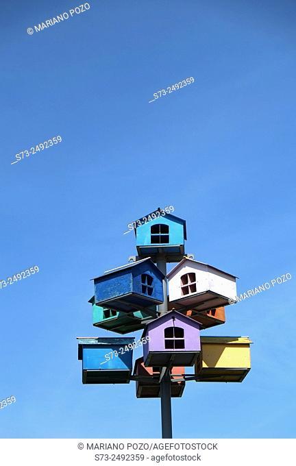 Birds house. Togliatty. Samara Region. Russia