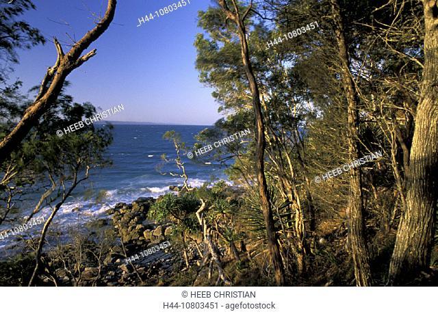 Australia, Noosa Heads, Noosa Heads, national park, Queensland, Sunshine Coast, forest, trees, breaking, foam, coast