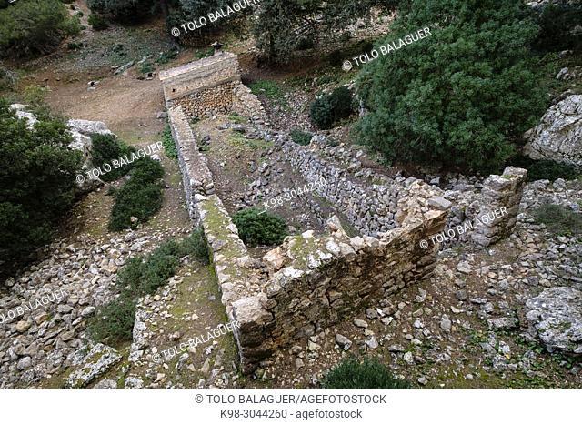 Boal de Ses Serveres, finca publica Son Fortuny, Estellencs, Serra de Tramuntana, Mallorca, balearic islands, Spain