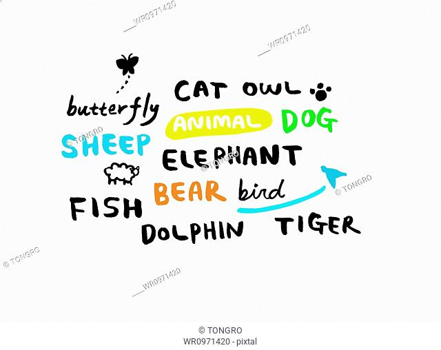 animals written in different fonts and colours
