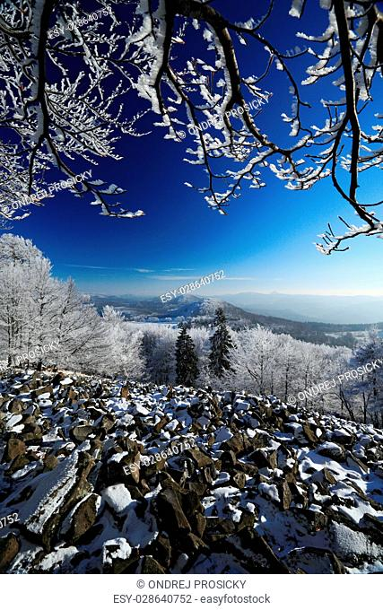 Stone of sea landscape with snow and dark blue sky and branches