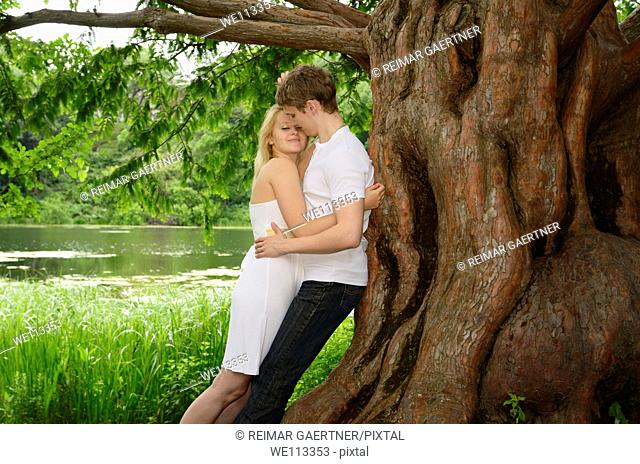 Couple embracing under a large Dawn Redwood tree on the shore of a lake