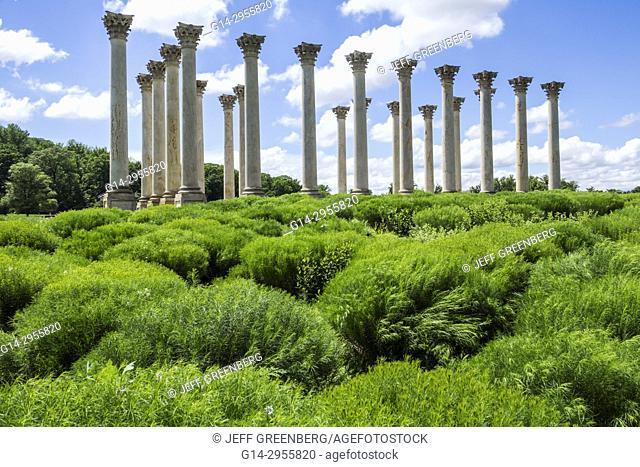 Washington DC, District of Columbia, United States National Arboretum, botanical garden, Ellipse Meadow, National Capitol Columns, Corinthian