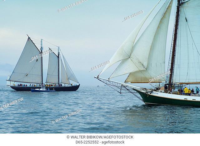 USA, Massachusetts, Gloucester, Schooner Festival, schooners in Gloucester Harbor