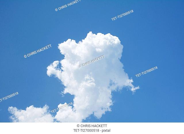 White cumulus cloud on blue sky