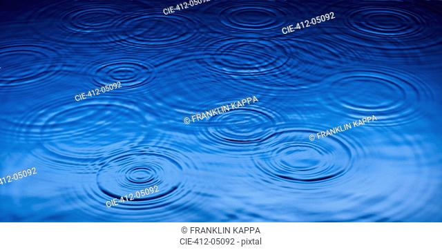 Ripples of raindrops in puddle