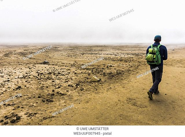 New Zealand, Tongariro National Park, back view of hiker with backpack