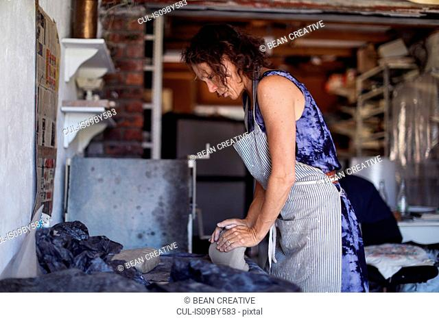 Female potter shaping clay in workshop