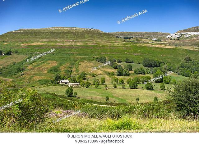 Nature landscape. Cabañas pasiegas and meadows. Cottage in Las Machorras. Burgos Castilla Leon, Northern Spain, Europe