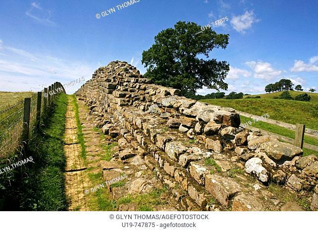Hadrian's Wall near Gilsland, Cumbria, England, UK