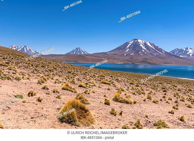 Lagoon, Laguna Miscanti with volcano Chiliques and Cerro Miscanti, Altiplano, Región de Antofagasta, Chile