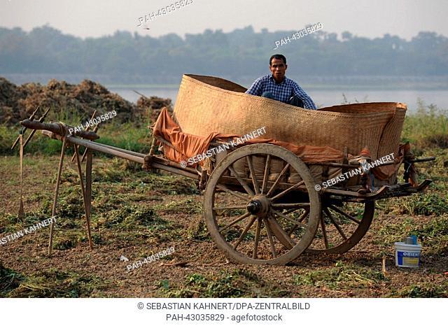 A farmer sits inside a woven basket on a cart in Amarapura, Myanmar, 02.04.2013. Photo: Sebastian Kahnert | usage worldwide. - Amarapura/Birma