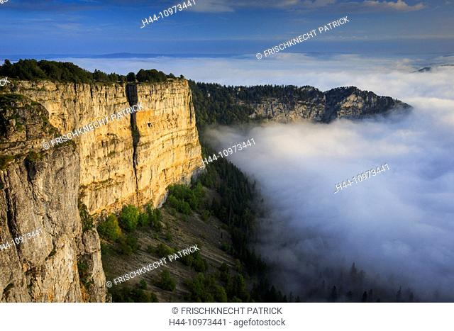 Alps, rocky cirque, cirque, view, mountains, mountain massif, trees, Creux du van, cliff, rock, cliff massif, cliff wall, mountains, sky, Jura, morning