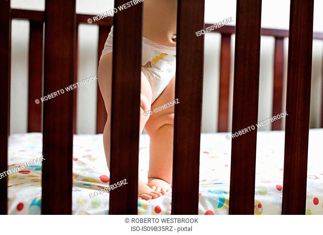Toddler standing in cot, low section