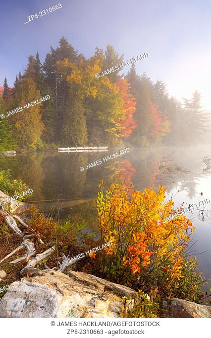 Fog and vibrant autumn colours at sunrise in Algonquin Provincial Park, Ontario, Canada